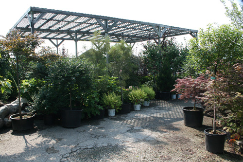 Creechs Garden Center And Landscaping : Tour meyer s garden center and landscaping
